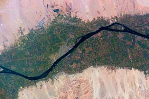 Agricultural Fields along the Nile