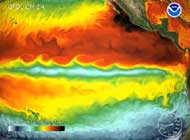 Sea Surface Temperature (SST) Simulation