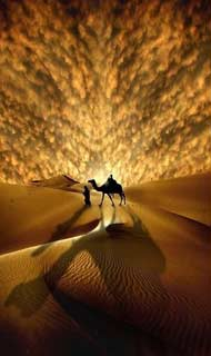 Eternal Things: Camel, Desert, Sun