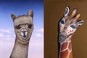 Alpaca and Giraffe