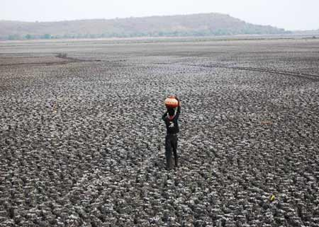 India's Big Drought