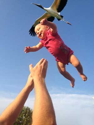 Proof That the Stork Brings Babies