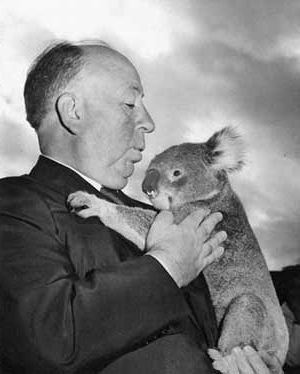 Hitchcock and Wary Koala