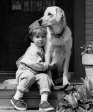 Young Children and Pets Are the Most Reliably Loyal