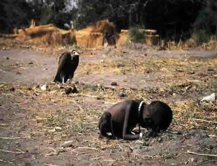 ... won Kevin Carter the 1994 Pulitzer Prize for feature photography