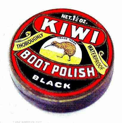 drug addiction kiwi